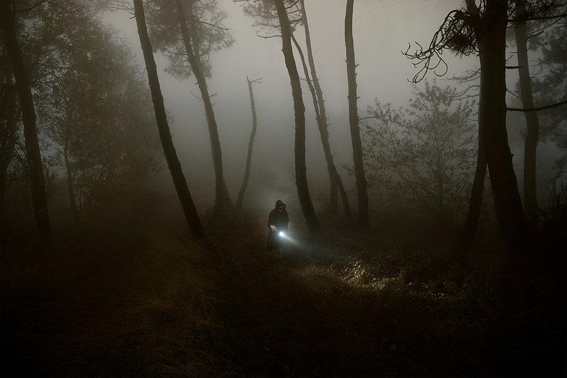 Filippo Giani: Untitled I