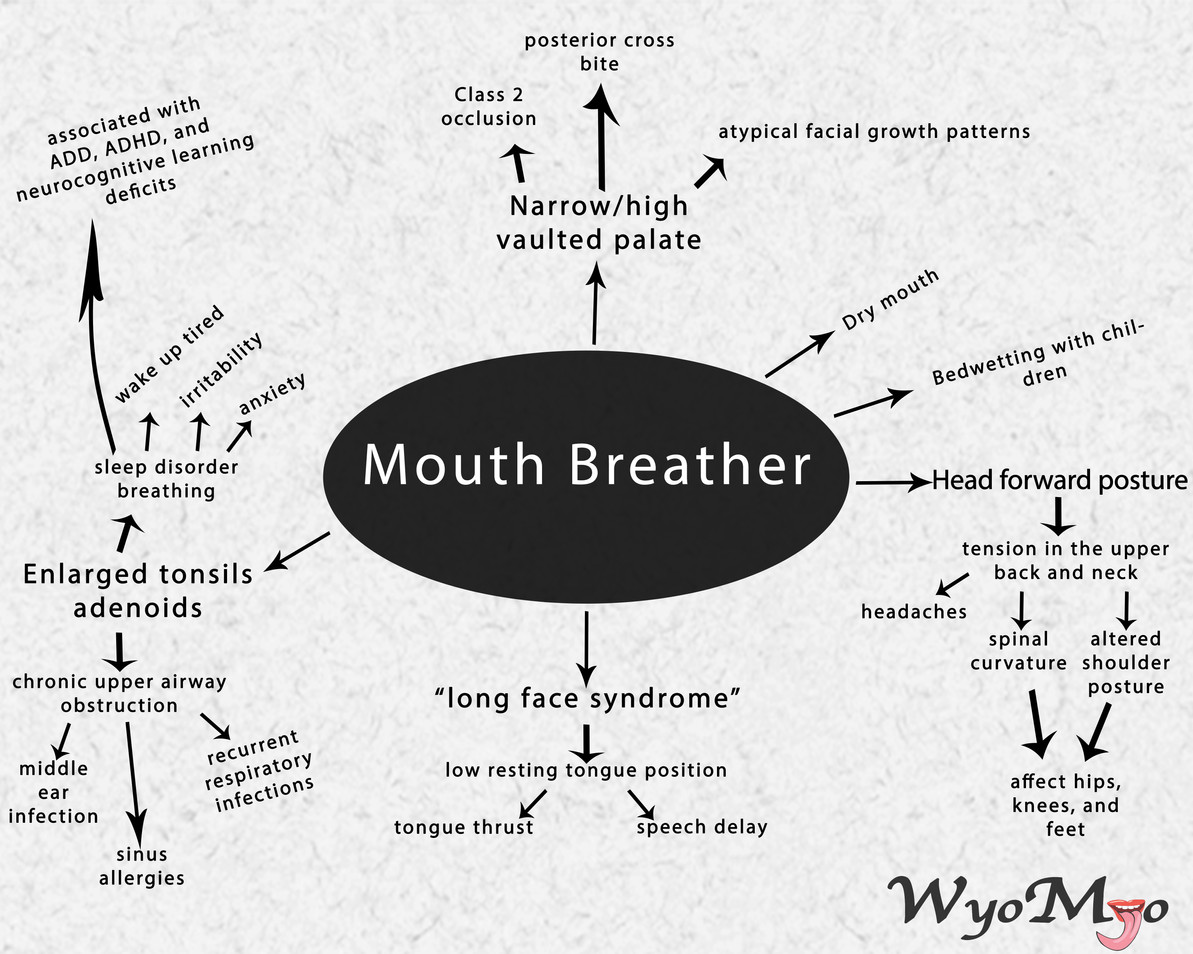 Effects of A Mouth Breather