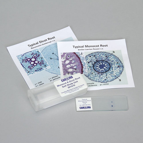 Discovering Monocot and Dicot Roots Self-Study Unit, Microscope Slide Set