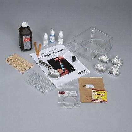 Carolina Chemonstrations®: Isolating the Elements