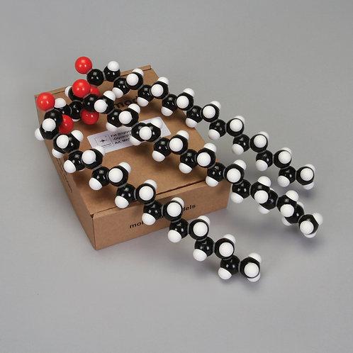 Molymod® Fat Model Kit