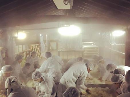 越後鶴亀醸造体験イベント中