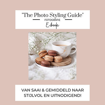 """Gratis """"The Photo Styling Guide"""""""