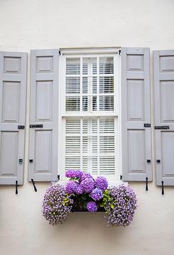 Window.flower.jpg