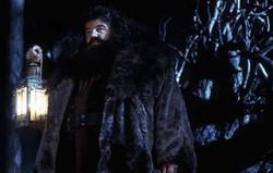 Robin Williams voulait jouer Hagrid