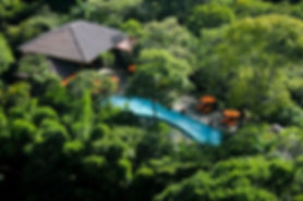 bodhi-pool.jpg