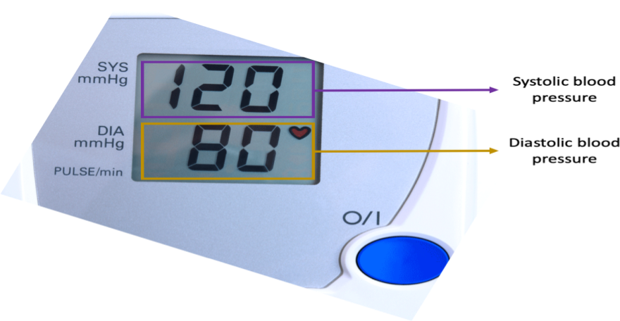 Systolic blood pressure refers to the highest number on a blood pressure reading, whereas diastolic blood pressure is the smallest number.