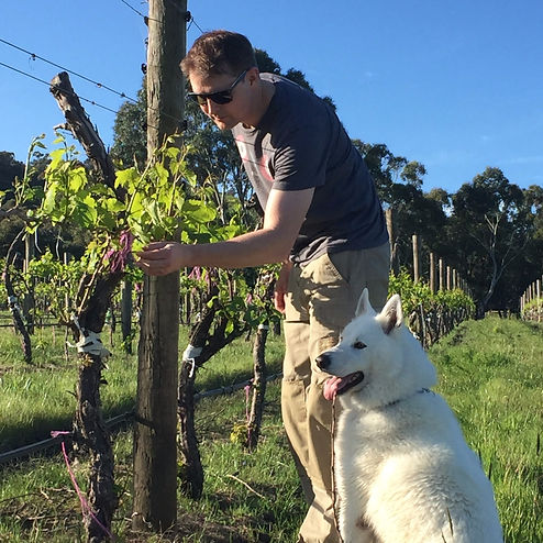 Fetherston Vintners Wine Dog Oscar and Wiemaker in Vineyard