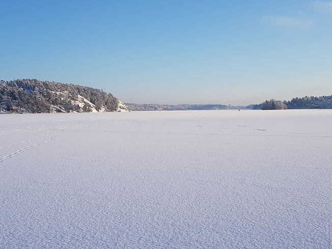 Falkberget_på_vintern.jpg