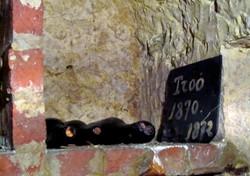 120 Year Wine A410