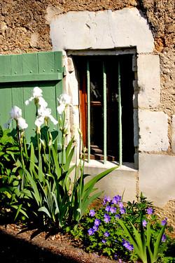 Francois' Window