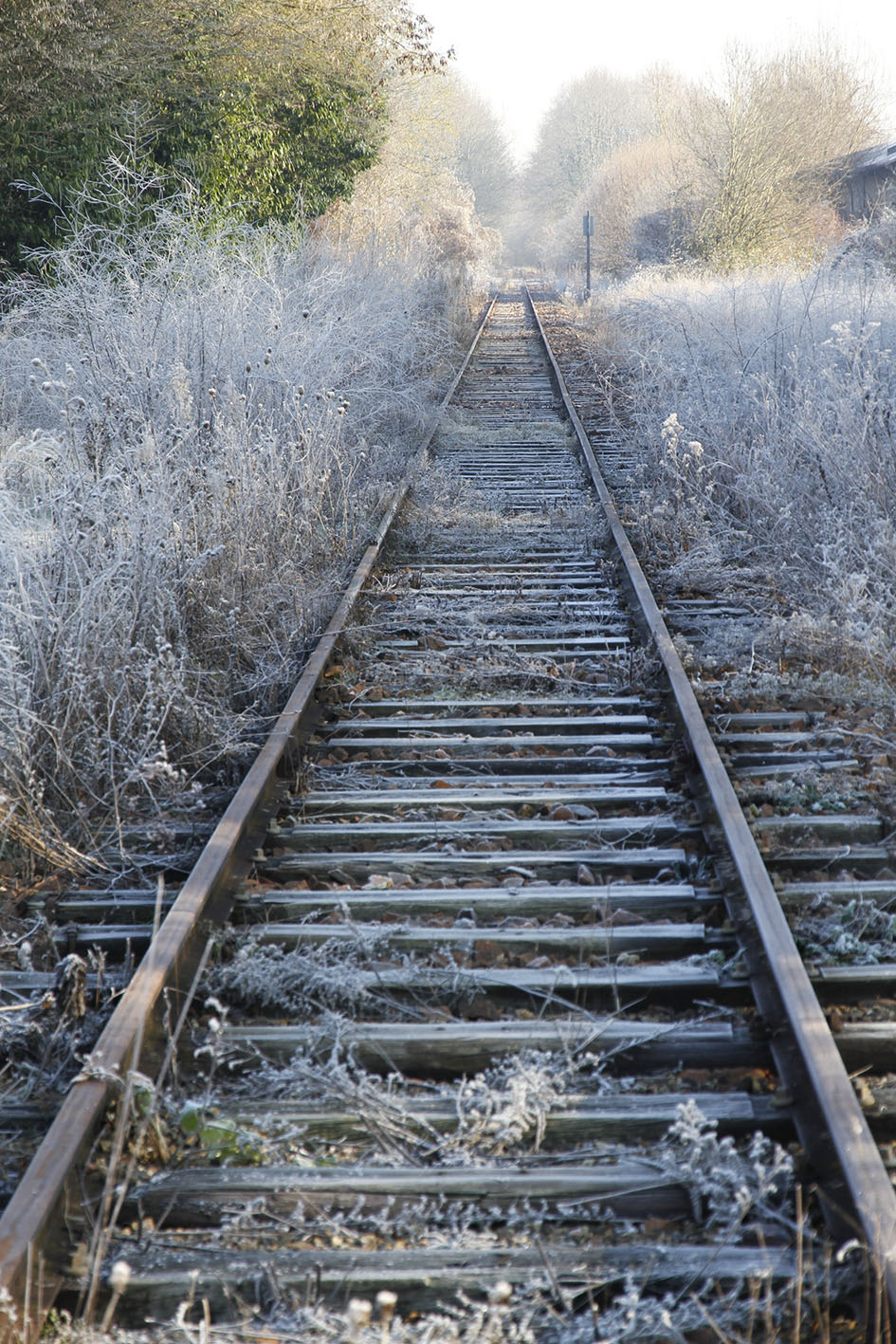 Railway Frost