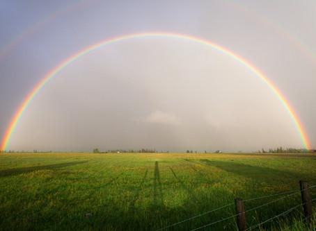 Rainbows & Healing