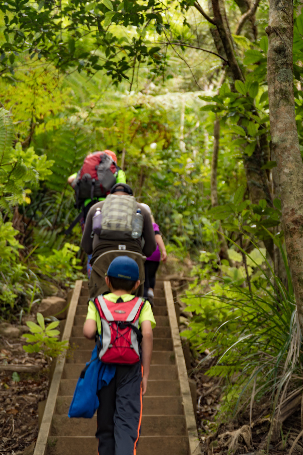 Our Steep Journey Up Mount Manaia with the Transparent Travelers at www.transparenttravelers.com
