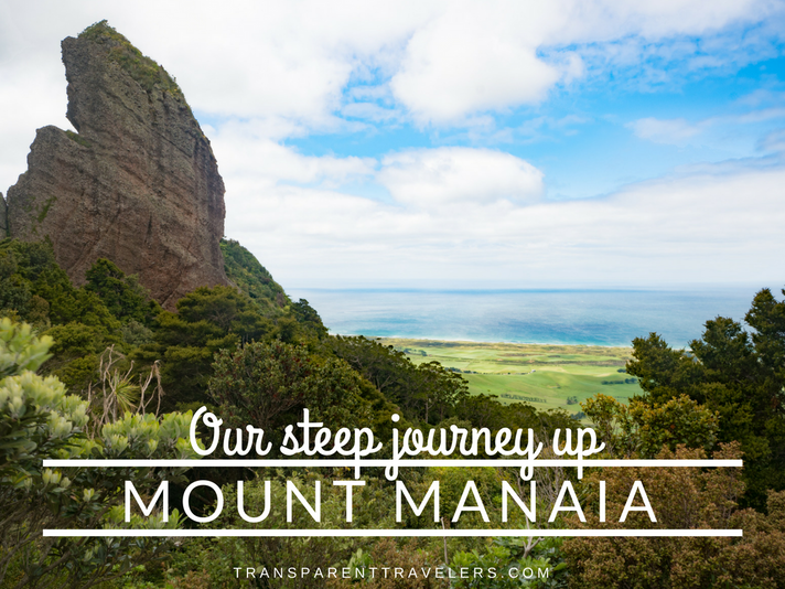 Our Steep Journey Up Mount Manaia