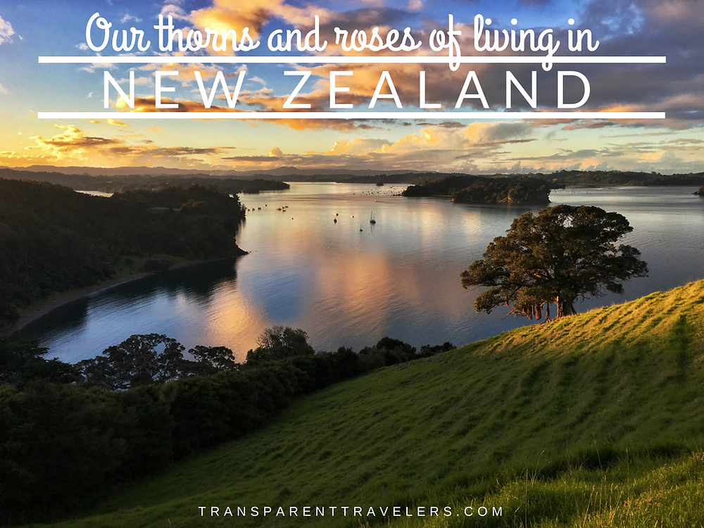 Our Thorns and Roses of Living in New Zealand with the Transparent Travelers at www.transparenttravelers.com