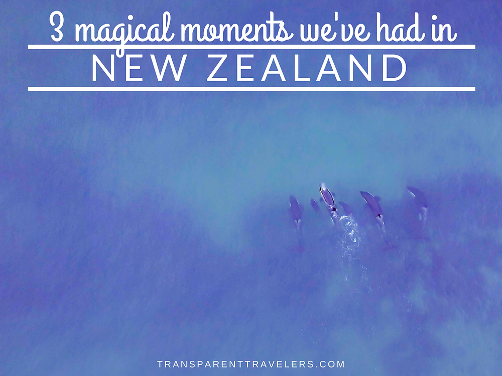 3 Magical Moments We've Experienced in New Zealand with the Transparent Travelers at www.transparenttravelers.com