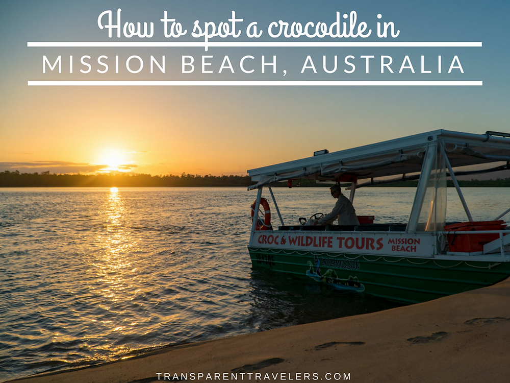 How to Spot a Crocodile in Mission Beach, Australia with the Transparent Travelers at www.transparenttravelers.com
