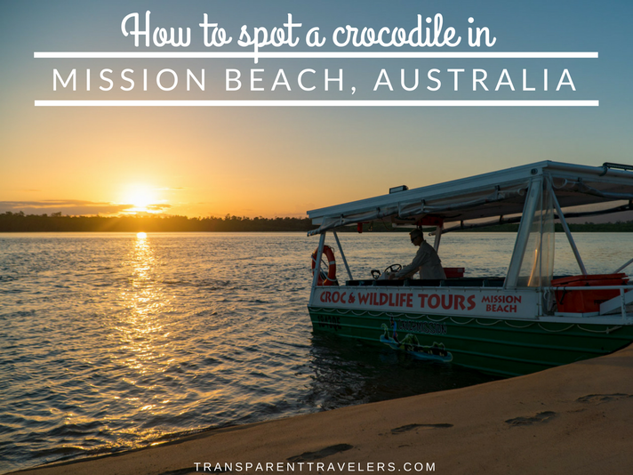How to Spot a Crocodile in Mission Beach, Australia