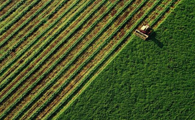 Fórum mostra oportunidades para o desenvolvimento do agronegócio baiano