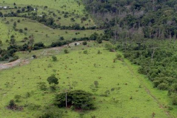 Incra disponibiliza Certificado de Cadastro de Imóvel Rural
