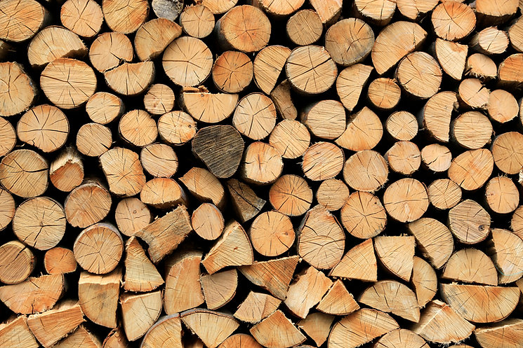 firewood-pile-stacked-chopped-wood-trunk