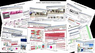 Enterprise Software Solutions