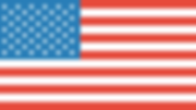 PipCountFX - US Flag.png