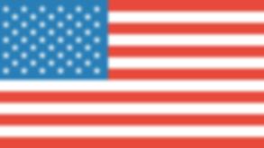 PipCountFX - US Flag.png