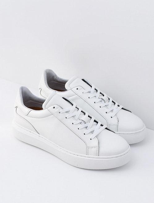 Sneakers Boone