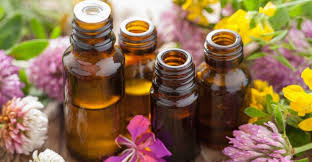 Essential Oils and Your Health… what's all the craze about???