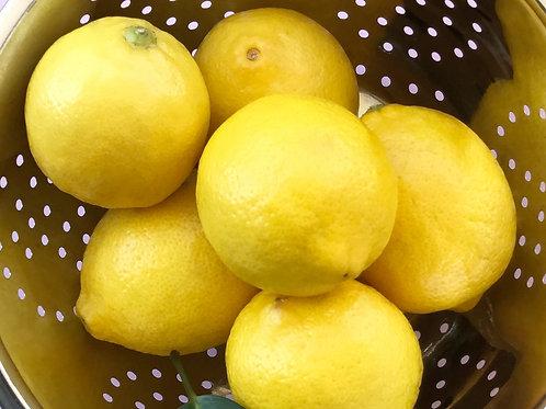 Lemon Verbena Melts