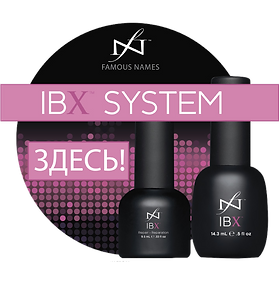 IBX System в Озерках