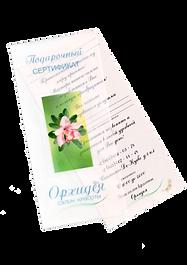 Подарочный сертификат в СПб, подарочный сертификат в Выборгском районе, Салон красоты Орхидея СПб