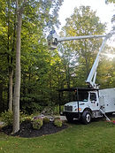 Whether you need climber or a bucket for your tree removal, we've got you covered! Call for your free quote!