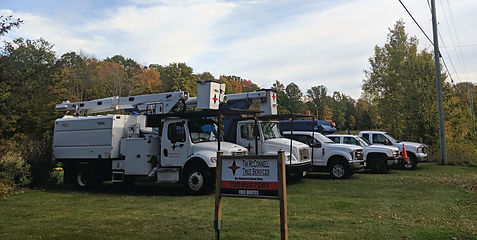 We know what it takes to get the job done efficiently and safely which is why we are equipped with state-of-the-art equipment. sary to get any treehich is why we have the job doe safely and effieicelty. Whether you have a 15 foot cedar or a 100 ft maple, we can get the job done!