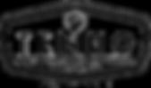 Logo-läpinäkyvä pohja.png