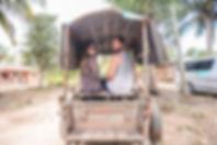 Ox Cart Drive