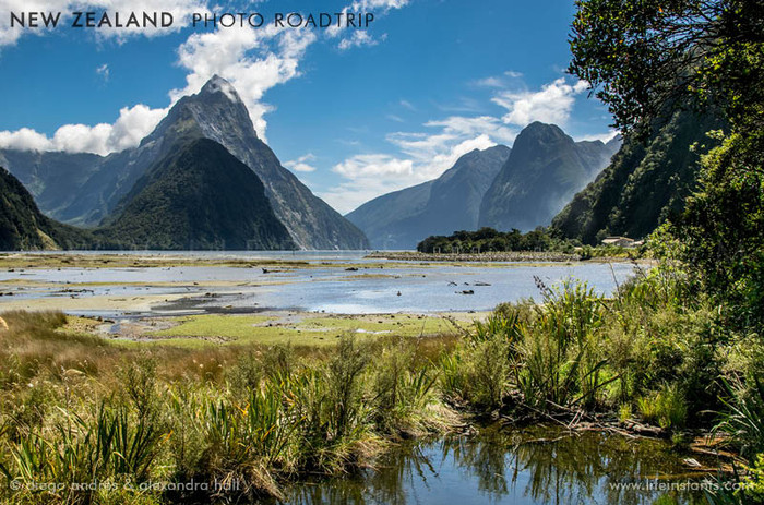 Photography Adventure Travel New Zealand Milford Sound