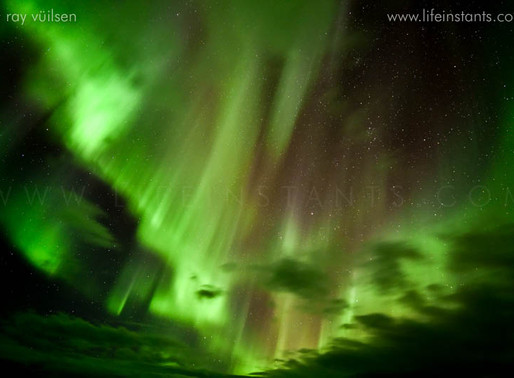 When is the best time to see the Northern Lights? Three tips to make it a memorable experience