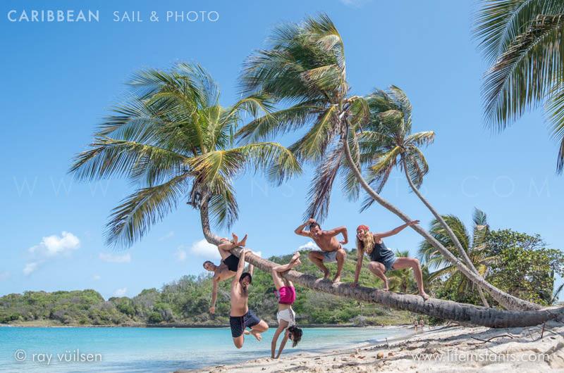 Photography Adventure Travel Caribbean Sail Beach Palm Tree