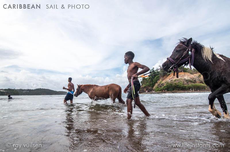 Photography Adventure Travel Caribbean Sail Horses Kids
