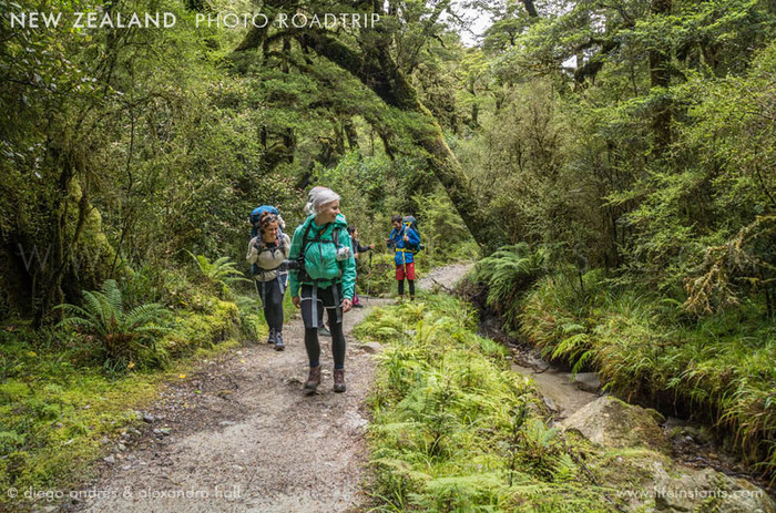 Photography Adventure Travel New Zealand Trek