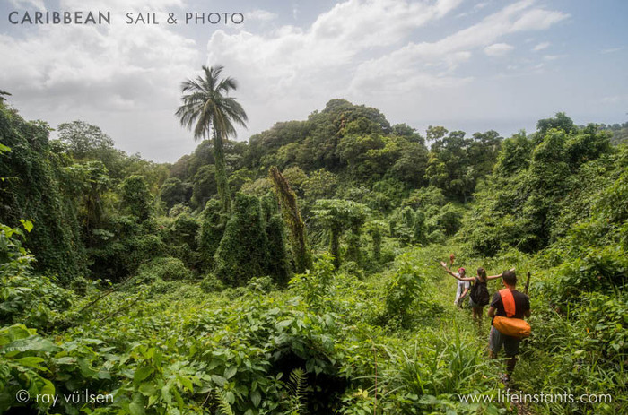 Photography Adventure Travel Caribbean Sail Jungle Hike