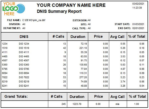Comm One Call Accounting Software sample DNIS summary report