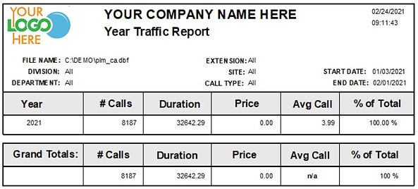 Comm One Call Accounting Software year traffic report sample