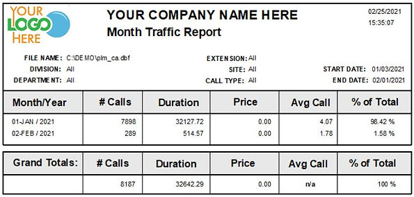 Comm One Call Accounting Software month traffic sample report