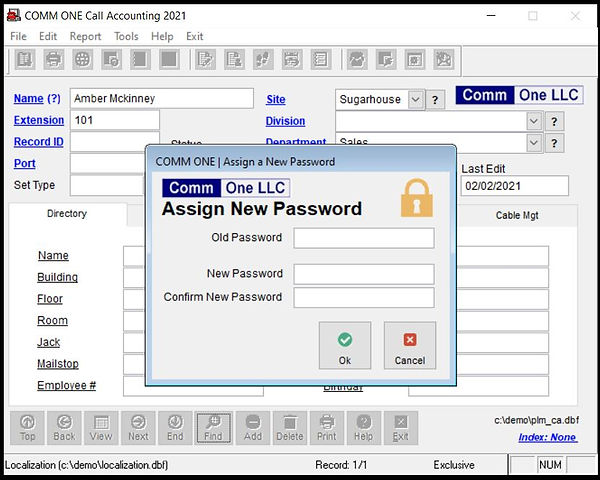 Comm One Call Accounting Software new password entry screen