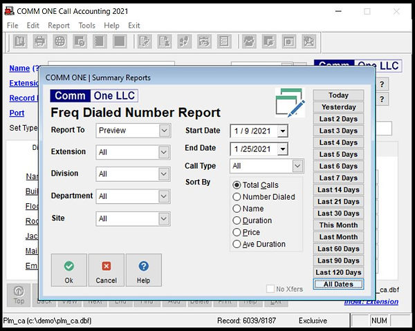 Comm One Call Accounting Software frequently dialed number report options screen