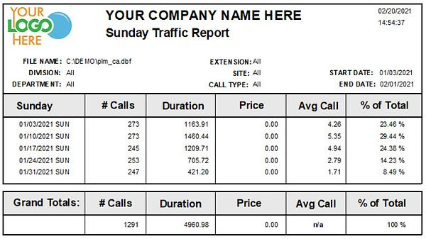 Comm One Call Accounting Software Sunday traffic report sample